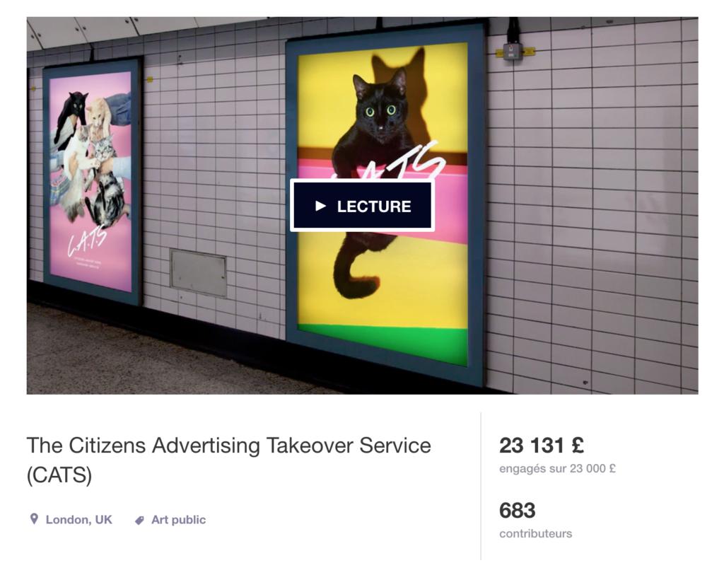kickstarter-cat-campaign